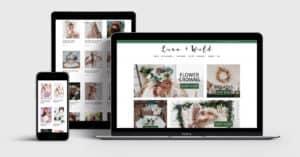 Ecommerce Website Designer price